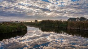 Lake in spring at dawn. Reflection of clouds in water stock video footage