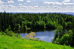 Lake in the spring forest Royalty Free Stock Images