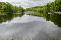 Lake in spring time Royalty Free Stock Image