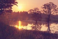 Lake on Sri Lanka Royalty Free Stock Photos