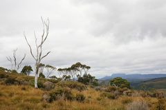 Lake St Cair National Park Cradle Mountain Royalty Free Stock Photography