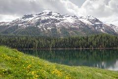 Lake St. Moritz , Switzerland. Stock Images