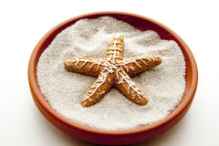 Lake star in the sand Stock Image