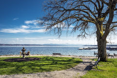 Lake Starnberg with bench Stock Photos