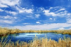 Lake in the steppe Stock Images
