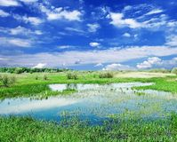 Lake in a steppe Royalty Free Stock Photo