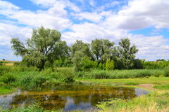 Lake in the steppe Royalty Free Stock Photo