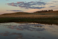 Lake in the steppe at sunset. Royalty Free Stock Images