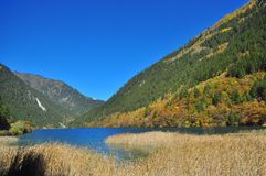 Lake with straw on a valley with trees Royalty Free Stock Photos