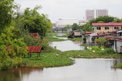 Lake in the suburbs of Bangkok, Thailand. Royalty Free Stock Images