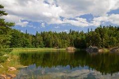 Lake in summer. Idyllic lake in Scandinavia in summertime Royalty Free Stock Photos