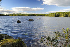 Lake summer beautiful nature royalty free stock photography