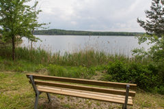 Lake in summer Royalty Free Stock Image