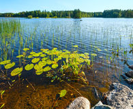 Lake summer view (Finland). Royalty Free Stock Image