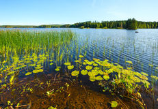 Lake summer view (Finland). Royalty Free Stock Photos