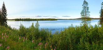 Lake summer view (Sweden). Stock Image