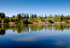 Lake on a summers day Stock Photography