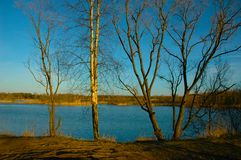 Lake in a sun day. Early in spring Royalty Free Stock Photo