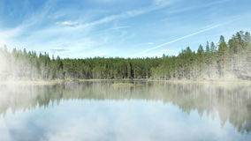 At the lake. Sunny scandinavian lake in summer and animated fog stock footage