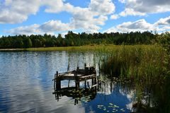 Lake on a sunny summer day royalty free stock image