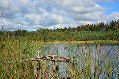 Lake on a sunny summer day stock photos