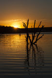 Lake Sunrise Stock Images