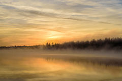 Lake sunrise fog golden Royalty Free Stock Photos