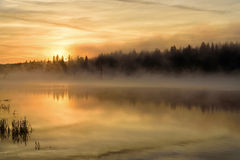 Lake sunrise fog golden Stock Photography