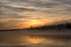 Lake sunrise fog golden Stock Photos