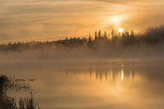 Lake sunrise fog golden Royalty Free Stock Image