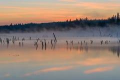 Lake sunrise fog peach Stock Photography
