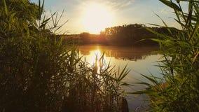 Lake. Sunset on the lake Royalty Free Stock Photography