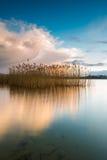 Lake after sunset Royalty Free Stock Photo