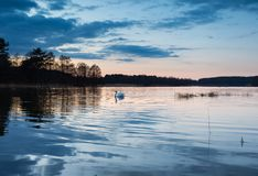 Lake after sunset Royalty Free Stock Images