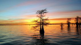 Lake Sunset. Sunset on Caddo Lake in Louisiana Royalty Free Stock Photography