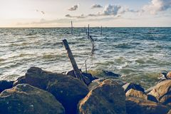 Picture of a fyke or fishing net at the IJsselmeer lake in the N. A lake at sunset with traditional fishing gear and waves that hit the coast Royalty Free Stock Photo