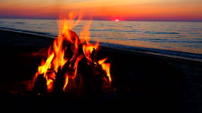 Image result for campfires on the beach