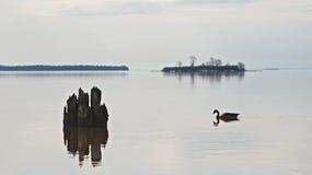 Lake Superior landskap Royaltyfria Bilder