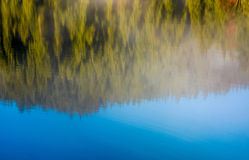 Lake surface reflecting spruce forest and sky Royalty Free Stock Image