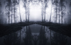 Lake in surreal forest. Lake in surreal symmetrical forest with dark fog Stock Images