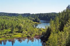 Lake surrounded with forest Royalty Free Stock Images