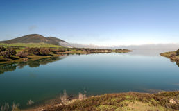 Lake surrounded by greenery Stock Images