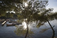 A lake surrounded with trees and a few boats by the jetty with two trees in the foreground Stock Photo