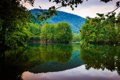 Lake Surrounded By Woodland Royalty Free Stock Photo