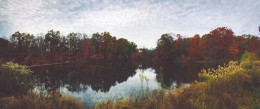 Lake Surrounded by Yellow and Red Trees during Daytime Stock Photography