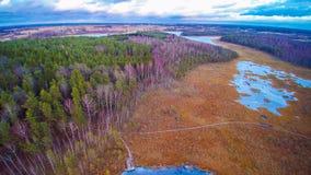 Lake swamp. Aerial view of frozen lake swamp and forest. Varnikai, near Trakai. Lithuania royalty free stock image