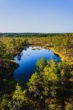 Lake on a swamp Viru Raba. In Estonia Royalty Free Stock Image