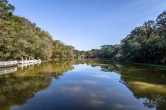 Lake with Swan Pedal Boats at Immigrant Village Park Parque Aldeia do Imigrante - Nova Petropolis, Rio Grande do Sul, Brazil Stock Images