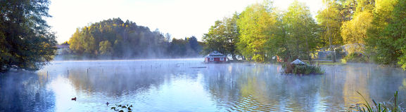 Lake in sweden. A lake in sweden a bird coloni Royalty Free Stock Photo