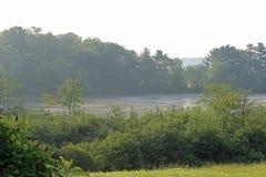 Lake swirls Royalty Free Stock Image